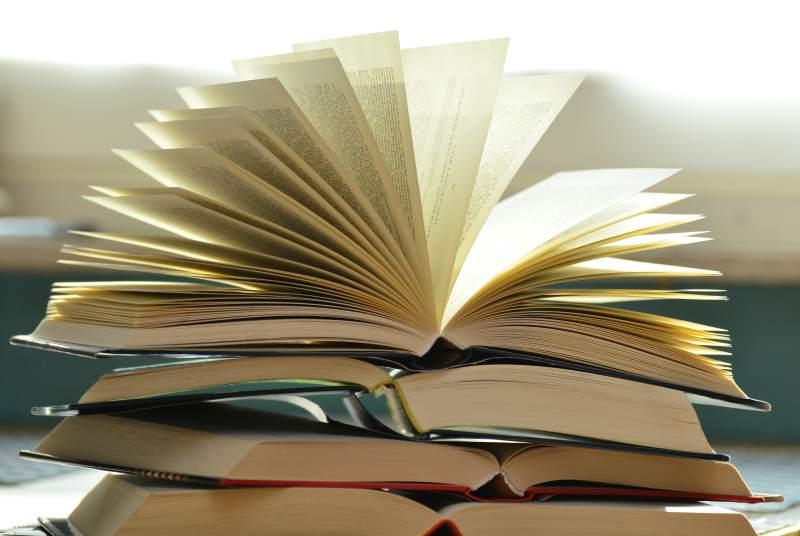 Cărți recomandate de Dua Lipa